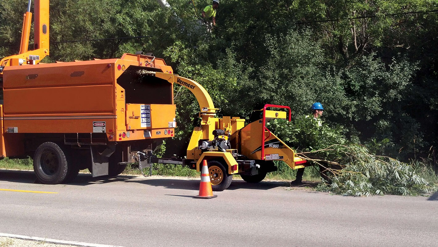 Commercial Tree Services-Lemon Grove CA Tree Trimming and Stump Grinding Services-We Offer Tree Trimming Services, Tree Removal, Tree Pruning, Tree Cutting, Residential and Commercial Tree Trimming Services, Storm Damage, Emergency Tree Removal, Land Clearing, Tree Companies, Tree Care Service, Stump Grinding, and we're the Best Tree Trimming Company Near You Guaranteed!