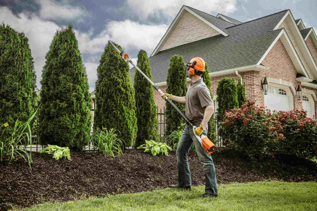 Encanto-Lemon Grove CA Tree Trimming and Stump Grinding Services-We Offer Tree Trimming Services, Tree Removal, Tree Pruning, Tree Cutting, Residential and Commercial Tree Trimming Services, Storm Damage, Emergency Tree Removal, Land Clearing, Tree Companies, Tree Care Service, Stump Grinding, and we're the Best Tree Trimming Company Near You Guaranteed!