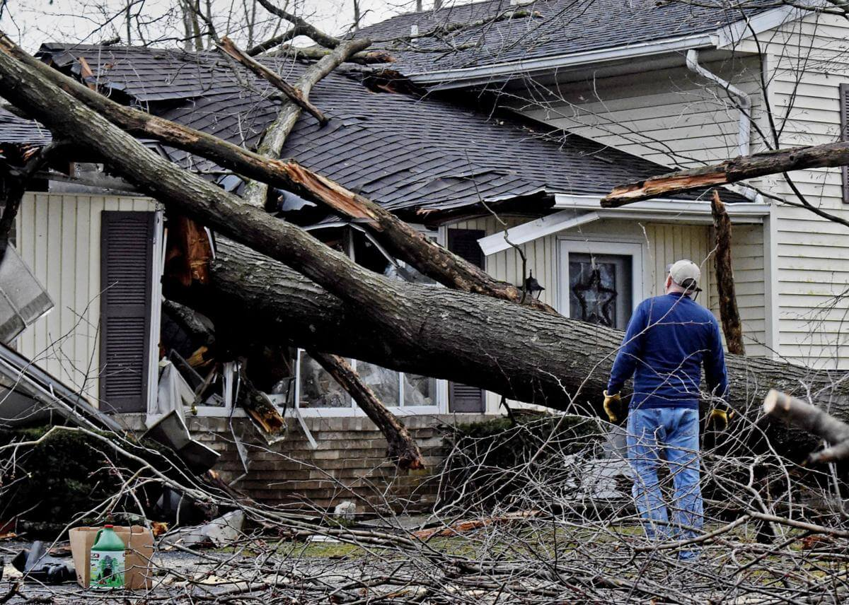 Storm Damage-Lemon Grove CA Tree Trimming and Stump Grinding Services-We Offer Tree Trimming Services, Tree Removal, Tree Pruning, Tree Cutting, Residential and Commercial Tree Trimming Services, Storm Damage, Emergency Tree Removal, Land Clearing, Tree Companies, Tree Care Service, Stump Grinding, and we're the Best Tree Trimming Company Near You Guaranteed!